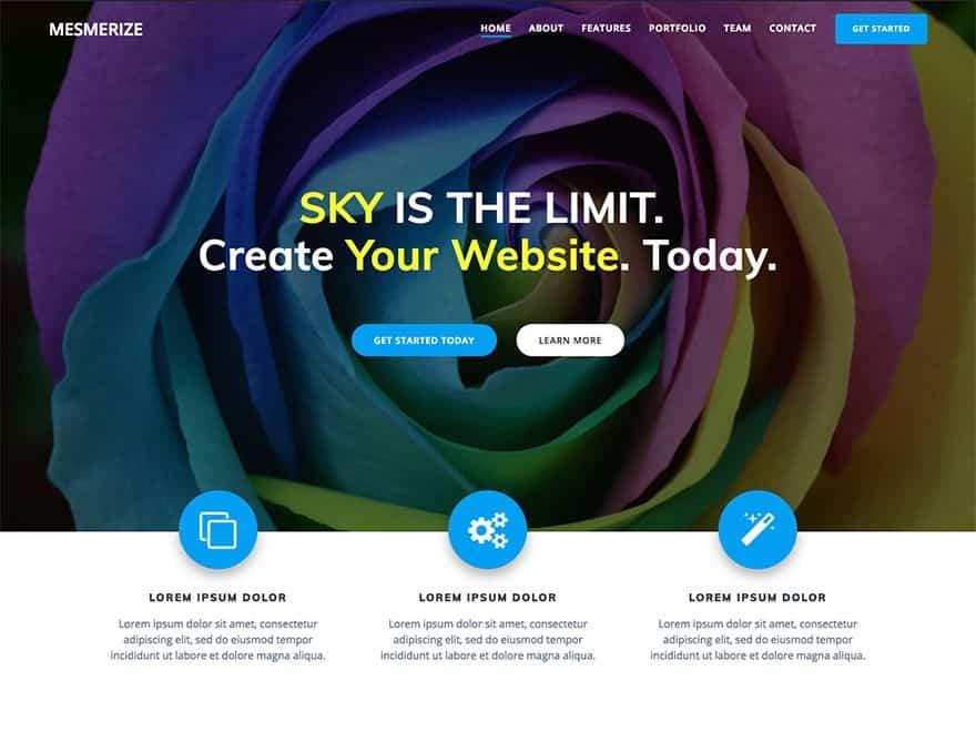 local business website design idea